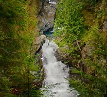 Twin Falls, Snoqualmie River, Washington by Stacey Lynn Payne