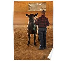 A Boy and Calf  Poster
