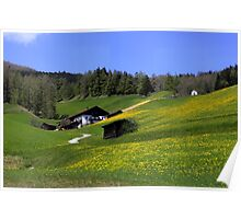Spring in Austria  Poster