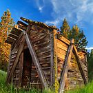 Evening Light On An Old Cabin by James Eddy