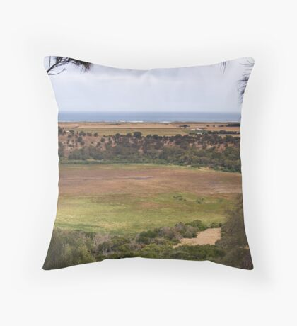 Tower Hill Reserve Throw Pillow