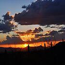 Sonoran Sunset by Aaron  Cromer