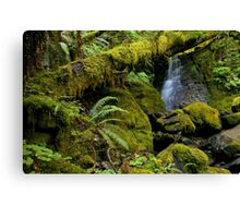a quiet and peaceful place... Canvas Print