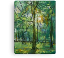 Emerald Twilight Canvas Print
