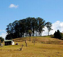 Hills,Trees  & Shacks by Brandie1