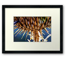 Spike the Plant Framed Print