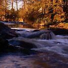 Riverfall II by Sam Mortimer