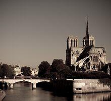 Notre-Dame de Paris by Sébastien FERRAND