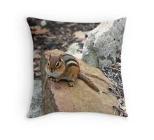 """Puffy Cheeks"" Chipmunk, Pennsylvania Throw Pillow"