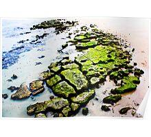 mossy rocks Poster