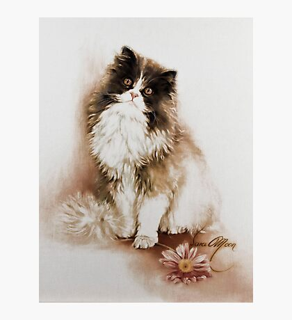 """""""Cat with Flower"""" Painting in Oils Photographic Print"""