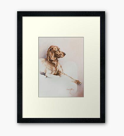 """""""Red Setter"""" Panting in Oils Framed Print"""