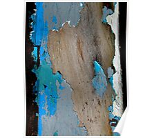 Chipped Paint 1 Poster