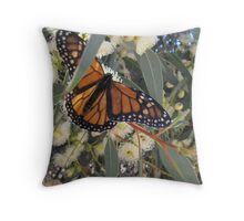LANDING COMPLETED! Monarch butterfly. Mount Pleasant, Sth. Australia. Throw Pillow