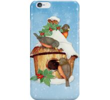 Winter Birds  and Christmas Birdhouse iPhone Case/Skin