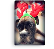 It's That Time Of The Year Again... Bah Humbug... Canvas Print