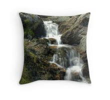 Small Water Beck Throw Pillow