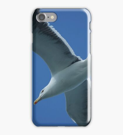 Herring Gull in Flight  iPhone Case/Skin