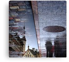 Puddle  time. III Canvas Print