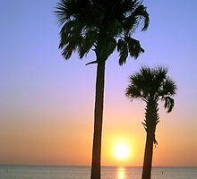 Two Palms by Loewin