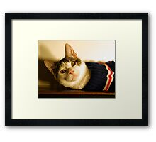 Max's Sweater Framed Print