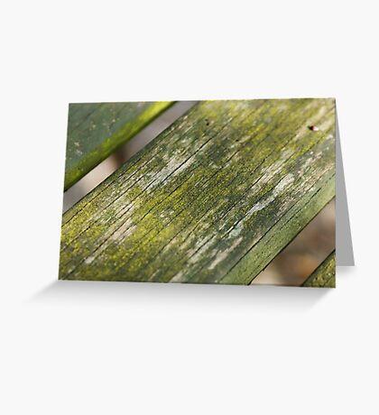 Moss on Wood Greeting Card