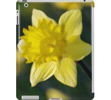 Daffodil 3 iPad Case/Skin