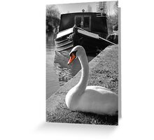 Canal Swan Greeting Card