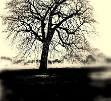 Lithotree by outsider