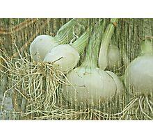 Spring Onions Photographic Print