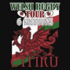Welsh Rugby 6 Nations Tour T Shirt - Cymru by Moonlake