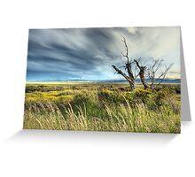 Big sky Patagonia Greeting Card