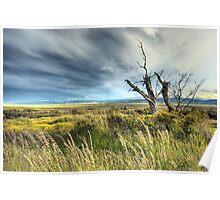 Big sky Patagonia Poster