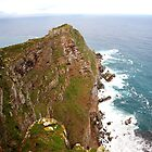 Cape point nature reserve. by Rudi Venter