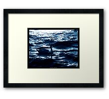 Midnight Elegance Framed Print