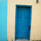 Blue Door by Christine Anna Wilson