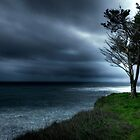Rainy Day In Davenport, Santa Cruz, CA by garyfoto
