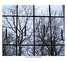 Window to another world Photographic Print