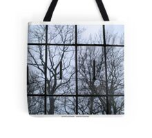 Window to another world Tote Bag