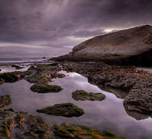 Grey Hound Rock, Santa Cruz, Ca by garyfoto