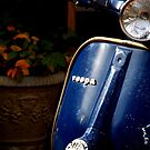 Vespa Dreams by divya vijay pratheek