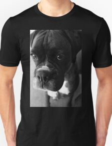 Can't You Tell... It wasn't Me... - Boxer Dogs Series T-Shirt