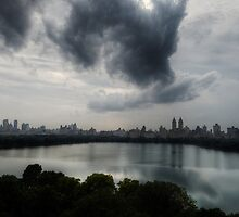 Dog in clouds.NY by garyfoto
