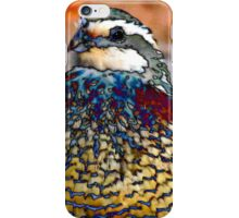 17. What Should I Do? iPhone Case/Skin