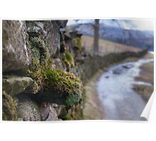 Rydal Water Vanishing Point Poster