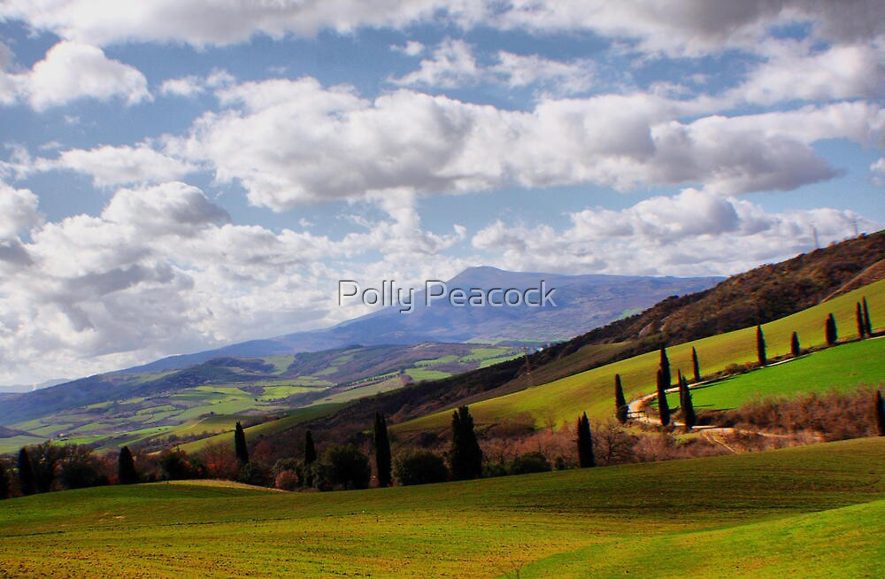 Rolling Hills by Polly Peacock