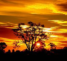 Sunset Over The Goldfields by Clive