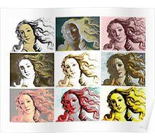 Warhol Venus Poster