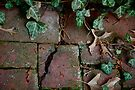 Broken Bricks  by Ainsley Kellar Creations