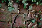 Broken Bricks  by Ainsley Kellar Creations